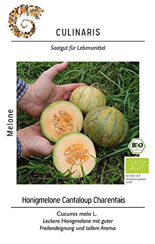 Culinaris 109 Honigmelone Cantaloup...