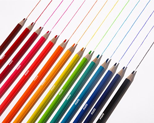 OMY POP Colored Pencil Crayons, Neons and Brights, Set of 16, Perfect for Kids and Adults