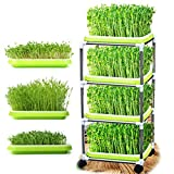 USDREAM Seed Sprouter Trays with 4-Tier Stainless Steel Frame Shelf Stand on Wheels Soilless Bean Sprouting Germination Growing Kits for Home Kitchen Use