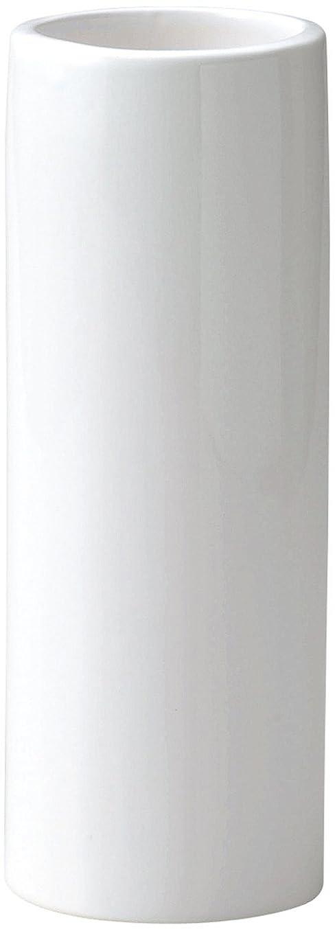 甥セッティング干渉GREEN HOUSE Monochrome Flower Vase ホワイト φ9×24cm 001-B/W