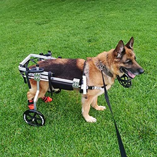 Carrello Passeggino per la Riabilitazione delle Zampe/Gamba/Piede Posteriori di Cani di Grossa Taglia, Sedia a Rotelle Regolabile per Cani di Anziani Feriti Disabili, 2 Ruote, 15~25 kg