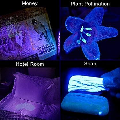 Escolite UV Flashlight Black Light Flashlight, 2pcack 12 LED 395 nM Ultraviolet Blacklight Flashlight Detector for Dog Urine, Pet Stains, Matching with Pet Odor Eliminator(Betteries not Include) 7