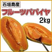 石垣島産フルーツパパイヤ(石垣サンゴ) 2kg 甘くて酸味が少なめパパイヤ独特の臭味も少なく カルシウムや植物繊維が豊富なヘルシーフルーツ