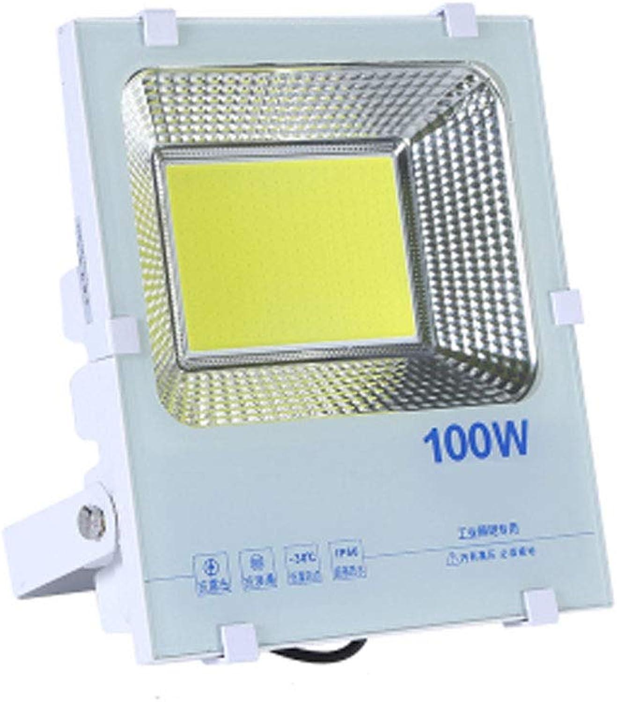 Q-floodlightS Csndice Home Strahler Mit,LED Geführtes im Freienlicht-super helle Standort-Fabrik-Licht-Werkstatt-Scheinwerfer-Scheinwerfer wasserdichtes IP66 IP65 66 (gre   100W)