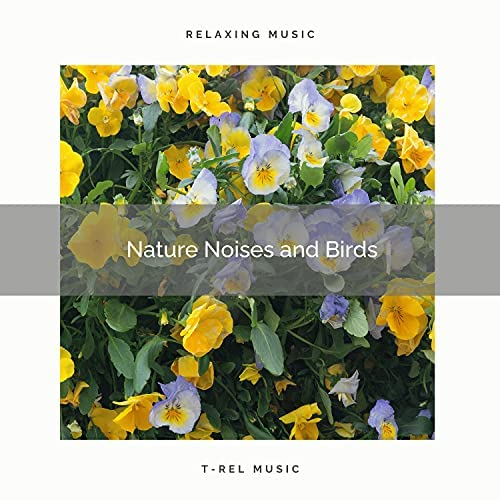 Nature & Sounds Backgrounds