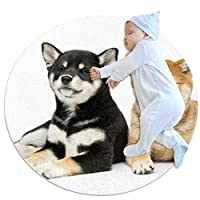 エリアラグ軽量 二匹の犬 フロアマットソフトカーペット直径27.6インチホームリビングダイニングルームベッドルーム