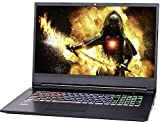 NEXOC Gaming - Portátil (17,3 pulgadas, Full HD, 144 Hz) con i5-8300H (2,30 GHz), RTX 2060 6 GB, 240 GB SSD, 1 TB HDD, 16 GB DDR4 RAM, (G1743)