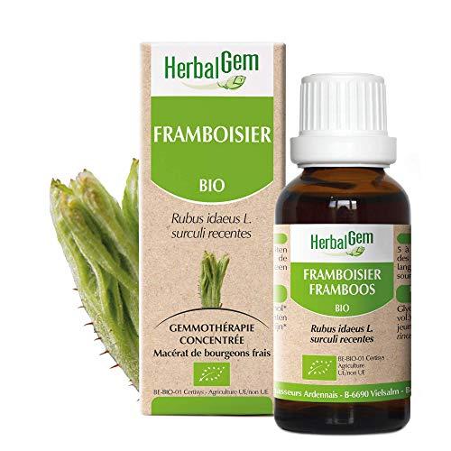 Herbalgem | Framboisier BIO | Gemmothérapie Concentrée | Jeunes Pousses de Framboisier | 50 ml…