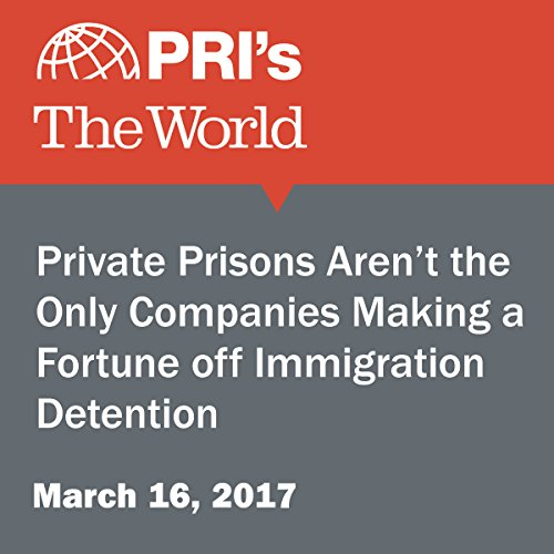 Private Prisons Aren't the Only Companies Making a Fortune off Immigration Detention audiobook cover art