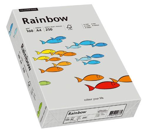 Papyrus 88042813 Druckerpapier Rainbow 160 g/m², A4 250 Blatt grau
