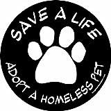 Imagine CE 4–3/10,2cm par 4–3/10,2cm de voiture Aimant Cercle Social Issues, Adoptez un Mouvement pour animal domestique, Noir
