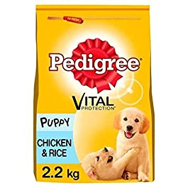 Pedigree Junior Dry Dog Food for Young Medium Dogs and Puppies 2-12 Months with Chicken and Rice