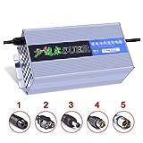 SUIBIAN Elektro-Scooter-Ladegerät, 58.4V 10A / 20A Lithium-Batterie Smart-Fast Charge, 6 Arten von Schutz, geeignet für Scooter/Balance Auto/Einrad/Akku Lade,10a,2