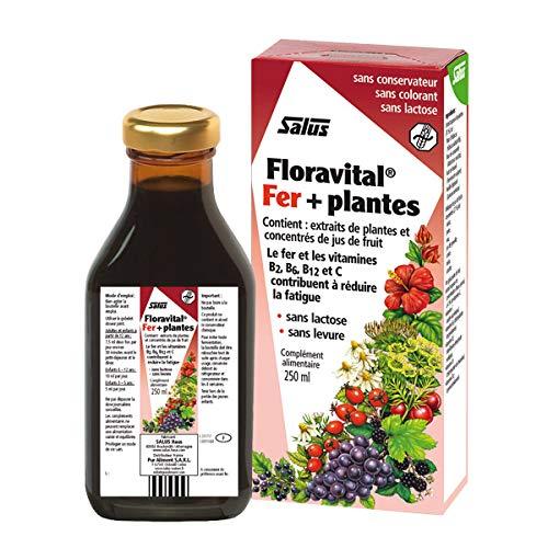 SALUS FLORADIX - Tonique Floravital Fer + Plantes 250Ml - Lot De 2