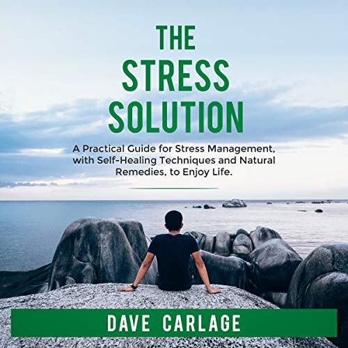 The Stress Solution cover art