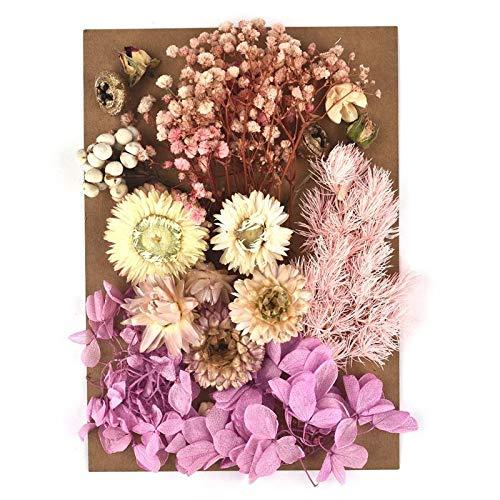 Kaxceay DIY Getrocknete Blume für Harzform, die echte Blume für Harz Füllungen Nail Art Home Handwerk Harz Casting Formwerkzeug (Color : 04)