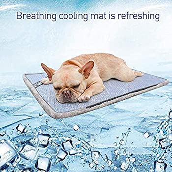 FTFDTMY Pet Pad Summer Cooling Mat Dog Dog Mats Blue Pet Ice Pad Cool Cold Silk Moisture-Proof Cooler Matelas Cushion Puppy Pad