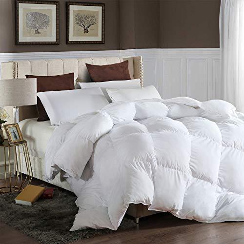 LESNNCIER Queen Down Alternative Comforter - Lightweight Duvet Insert All Seasons Ultra Plush Microfiber Fill Goose Down Alternative Comforter Machine Washable
