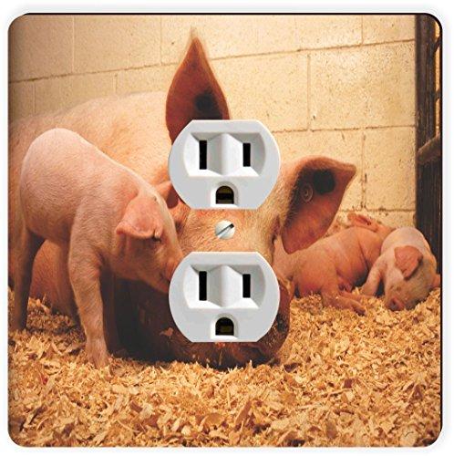 Rikki Knight Schweine in Stall einzigen Steckdose Teller