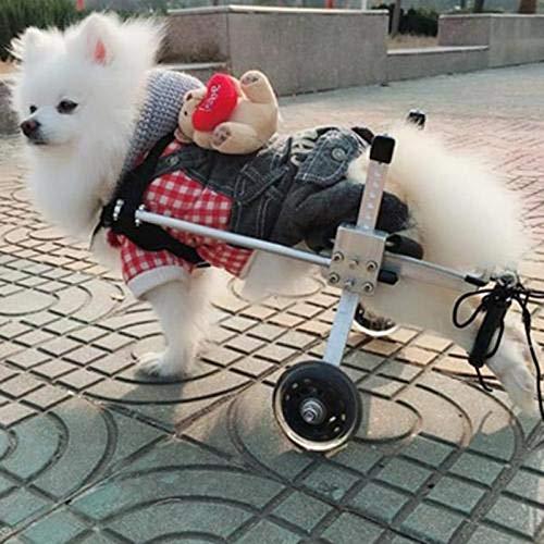 Silla De Ruedas para Perros, Rehabilitación De Patas Traseras Discapacitados Perro Asistido Caminan Dos Ruedas Silla De Ruedas Ajustable (XXXS-XXS - Peso: 0-2.5Kg, Altura: 13-27Cm)