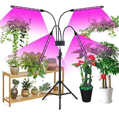 Niello 80W Pflanzlich with Stand, 80 LEDs Floor Grow Lampe Vollspektrum mit Auto ON & Off Timer 3/9/12H für Zimmerpflanzen, 4 verstellbare Köpfe mit Rot & Blau inkl. Für Sämlinge und Sukkulenten