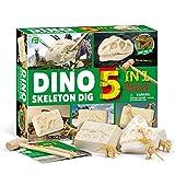 JoaSinc Kit di scavo Scheletro di Dinosauro, Dinosaur Dig Kit 5 in 1 fossili di Dinosauro Perforazione e scavo Kit Archeologia biologia Istruzione Giocattolo educativo Scienza per Bambini Regalo