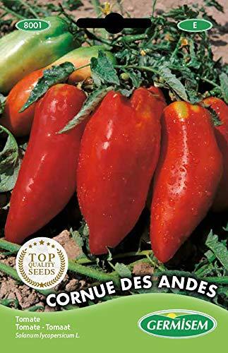 Germisem Cornue de Andes Graines de Tomate 0.2 g EC8001 Multicolore