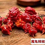 SONIRY 200 Pcs 100% T bonsaïs Plantes rares Chili Easyy pour Plantes Accueil Cultiver * Pepper Thai Sun: 8 Potted