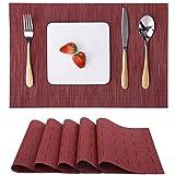 Myir JUN Tovagliette Americane Lavabili Plastica, Tovagliette Non-scivolose Resistenti al Calore, Set da 6 Tovagliette per Tavolo da Cucina (Rosso)