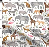 Tiere, Zebra, Giraffe, Afrika, Elefant, Safari, Zoo,