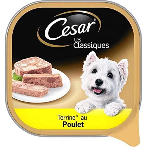 Cesar Les Classiques Terrine au Poulet 300g (Lot de 6)