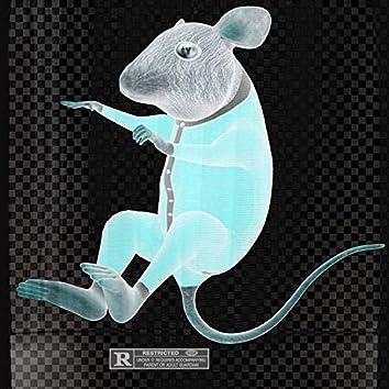 SCE ANDY (Ratatouille)