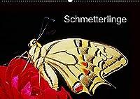 Schmetterlinge (Wandkalender 2022 DIN A2 quer): Schmetterlinge vor der Kamera (Monatskalender, 14 Seiten )