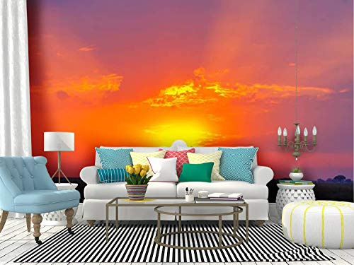 Kanworse Savanna Sunrise and Acacia Tree in africa's Serengeti African Canvas Print Wallpaper Wall Mural Self Adhesive Peel & Stick Wallpaper Home Craft Wall Decal Wall Poster Sticker for Living Room