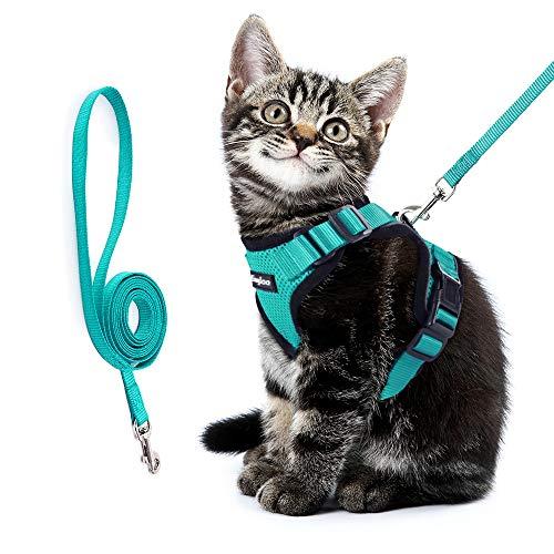 Eagloo Katzengeschirr Set mit Leine, Katzenleine mit Geschirr für Katzen Kitten Katzengarnitur Kleine Katze Cat Harness Soft Ausbruchsicher Kaninchengarnitur Verstellbar Katzenweste Grün XS