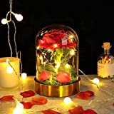 Flor Bella Y Bestia, rosa con luz LED, pétalos cayendo en la cúpula de cristal, luz de rosa de seda roja, utilizada para el día de San Valentín, cumpleaños, aniversario, regalos de boda
