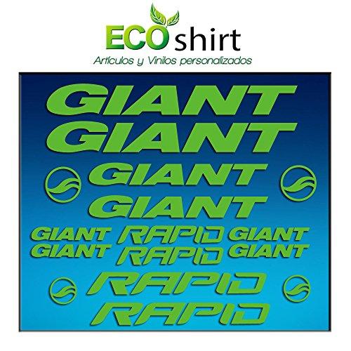 Ecoshirt Q0-DKJK-BLLC Aufkleber Frame Giant Rapid Am29 Stickers Aufkleber Decals Adesivi Bike BTT MTB Cycle, Grün