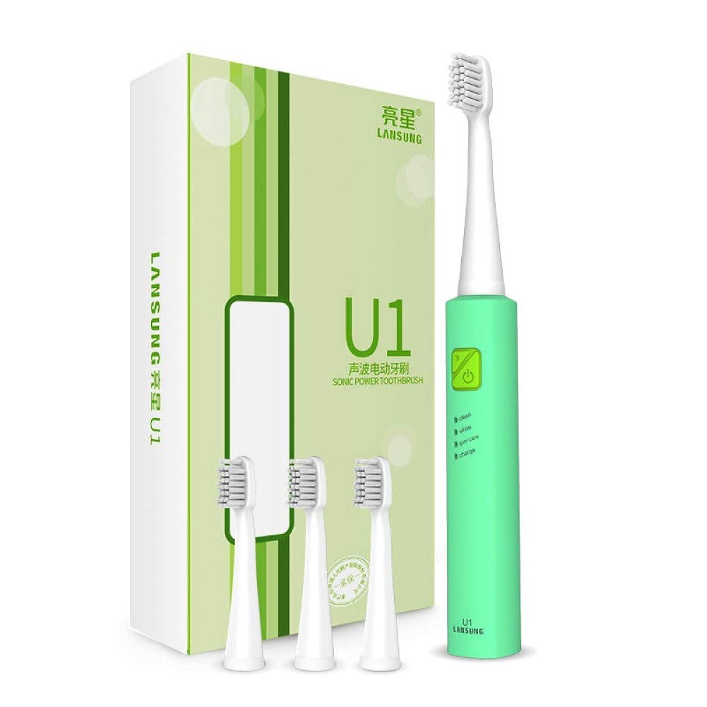 宣教師騒々しいわずかに再充電可能な超音波は歯の音波のブラシを白くする4つの歯ブラシの頭部のブラシセットを示しました電動歯ブラシ、B