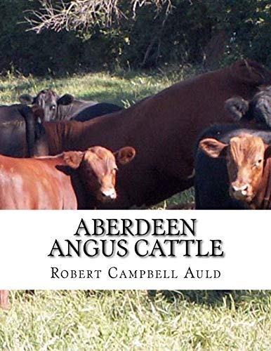 Aberdeen Angus Cattle: The Breed That Beats The Record and Wins in...