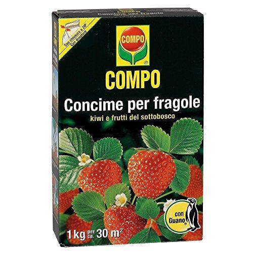 Compo 1271112005 Concime per Fragole con Guano, Marrone, 1Kg