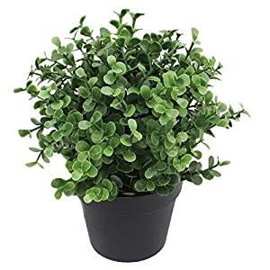 SunnyRoyal Artificial Mini Pant Potted Topiary Fake Buxus Boxwood Plants in Pot for Home/Indoor/Outdoor Décor