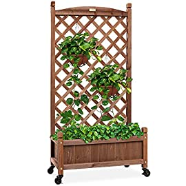 Best Choice Products 60in Wood Planter Box & Diamond Lattice Trellis, Mobile Outdoor Raised Garden Bed for Climbing… 2 DIAMOND LATTICE: A 60-inch trellis is woven in a tight, diamond pattern to provide structural support and plenty of space for climbing plants PLANTER BOX: Fill the 10-inch deep box with your favorite potted plants and a water-resistant liner (not included) or a fresh soil bed thanks to built-in drainage holes OPTIONAL WHEELS: A set of 4 included wheels can easily attach for added mobility and come with two locks for stability
