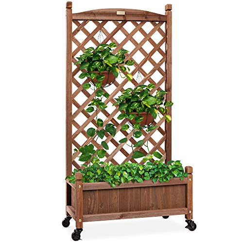 Best Choice Products 60in Wood Planter Box & Diamond Lattice Trellis, Mobile Outdoor Raised Garden Bed for Climbing Plants w/Drainage Holes, Optional Wheels - Walnut
