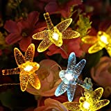Starryfill Dragonfly 40 LED String Lights 1.2'(H) 13.5ft Battery Operated Waterproof Warm White with Remote 8 Mode for Indoor Covered Outdoor Holiday Parties Garden Patio Plants Shelf Decorative