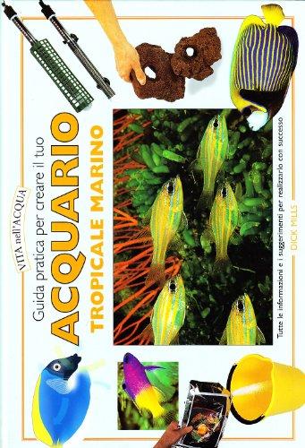 Guida pratica per creare il tuo acquario tropicale marino