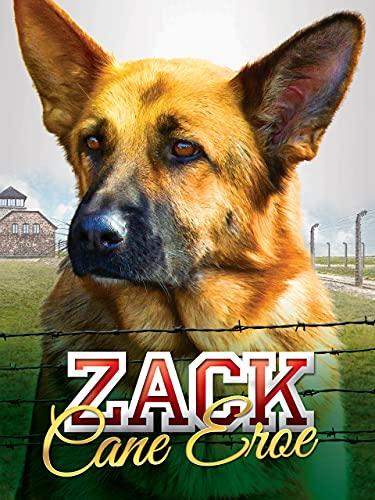Zack - Cane eroe