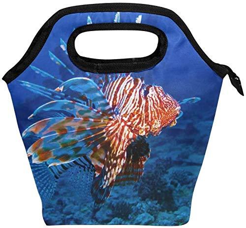 Lion Fish - Bolsa de almuerzo con cremallera aislada, bolsa de asas más fría para adultos, adolescentes, niños, niñas, hombres, mujeres, loncheras de pez león, loncheras, bolso de preparación de comid