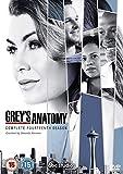 Grey's Anatomy - Season 14 [Italia] [DVD]