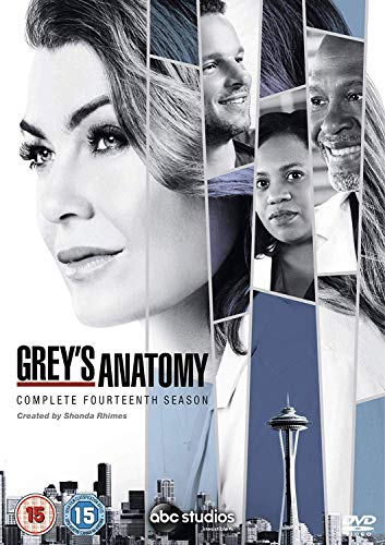 Grey's Anatomy Season 14 [DVD] [2018]