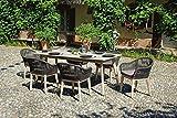 Greenwood Set Savona compuesto por 6 sillones es una mesa 200 x 95 cm DSA12